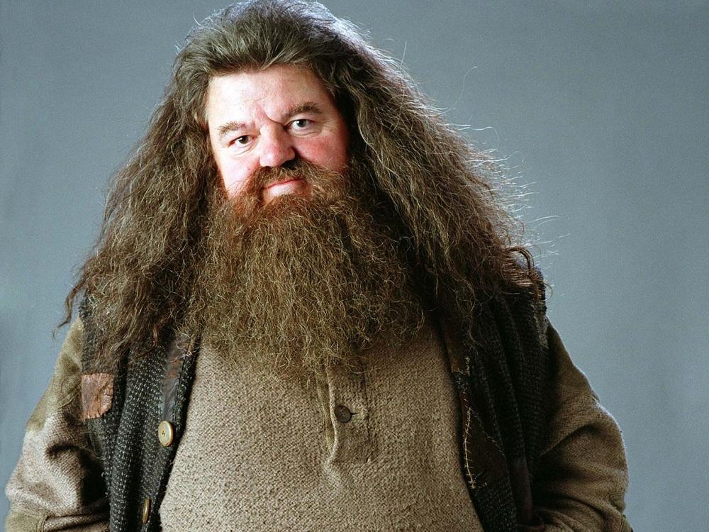Rubeus-Hagrid-Wallpaper-hogwarts-professors-32796370-1024-768.jpg