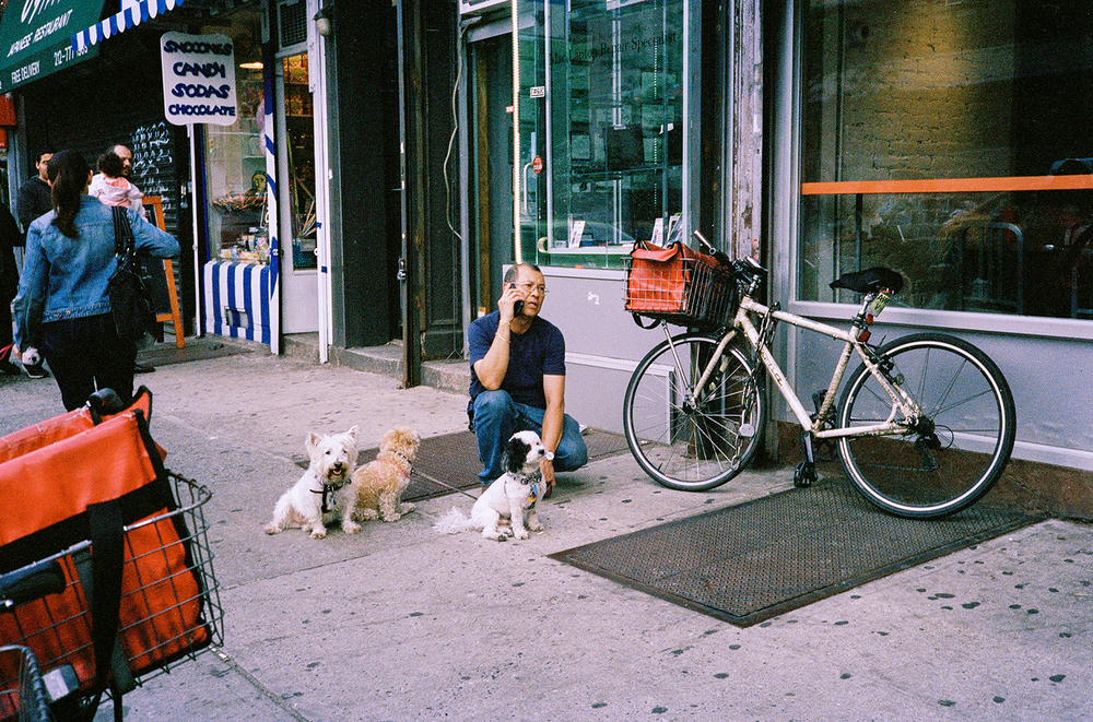 34_F24_Dog Walker, New York Wanderings 2014.jpg
