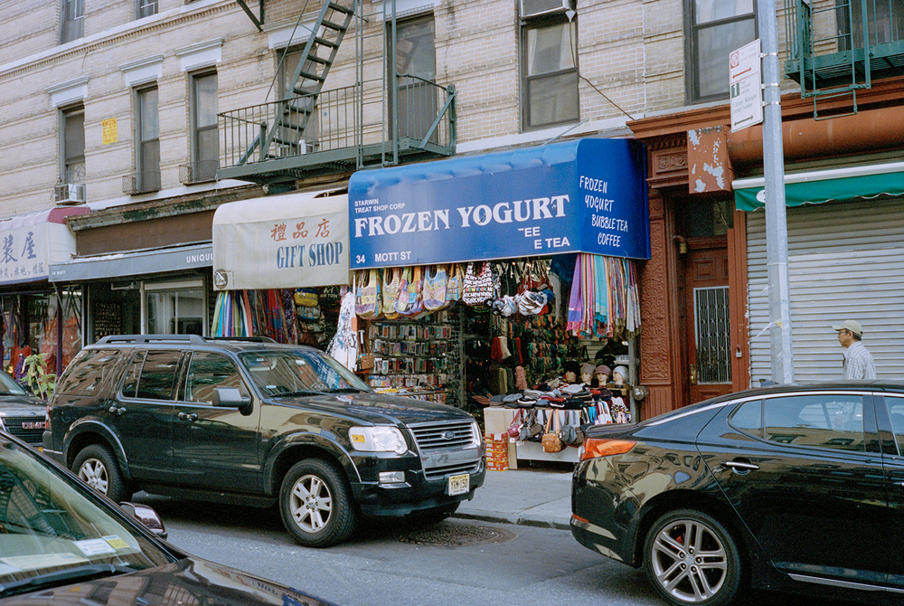 44_F33_China Town, New York Wanderings 2014.jpg
