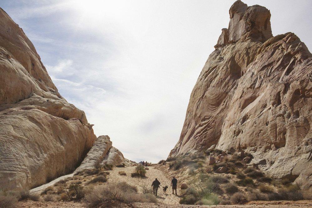 Mojave Desert-1703.jpg