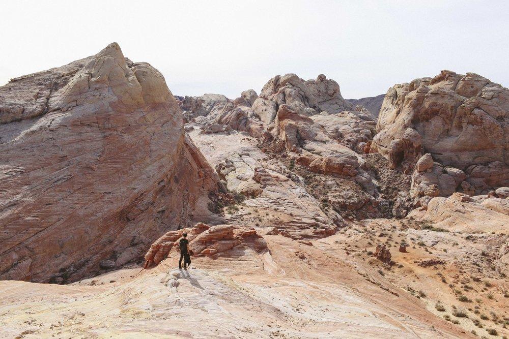 Mojave Desert-1716.jpg