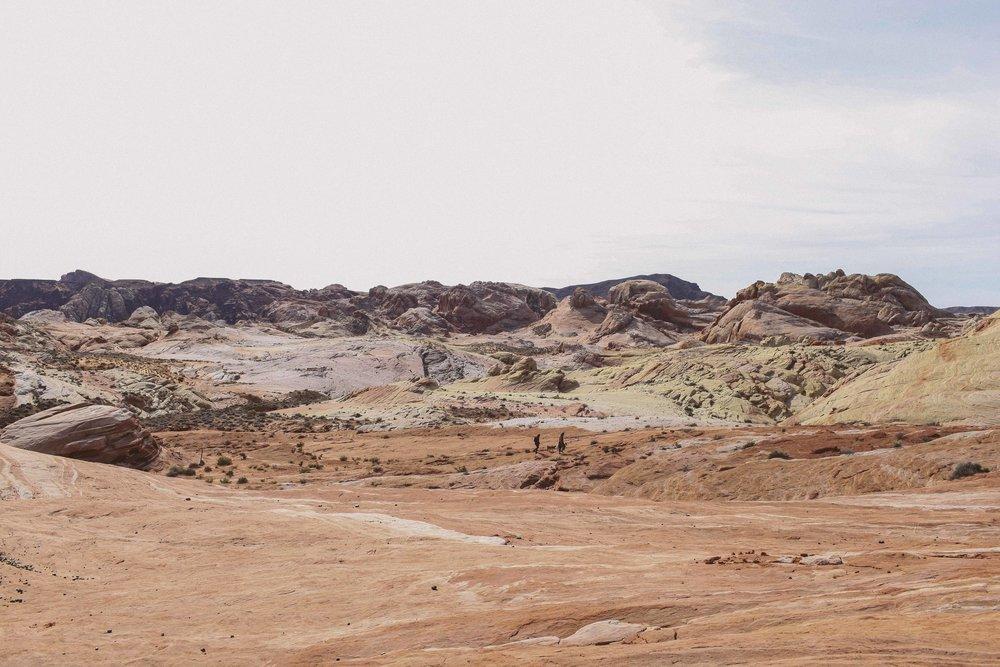 Mojave Desert-1729.jpg
