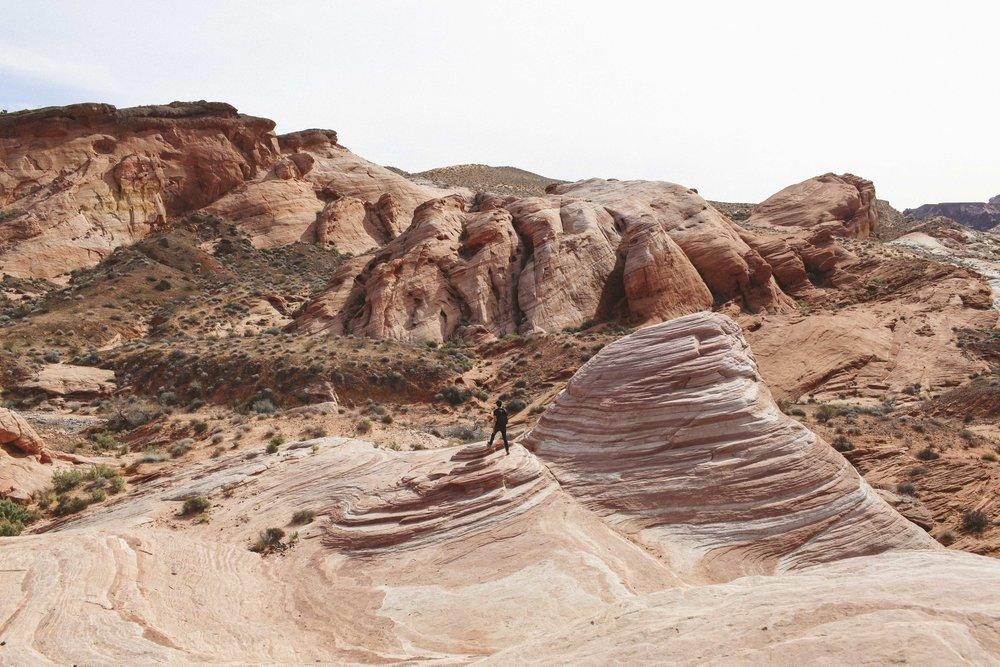 Mojave Desert-1738.jpg