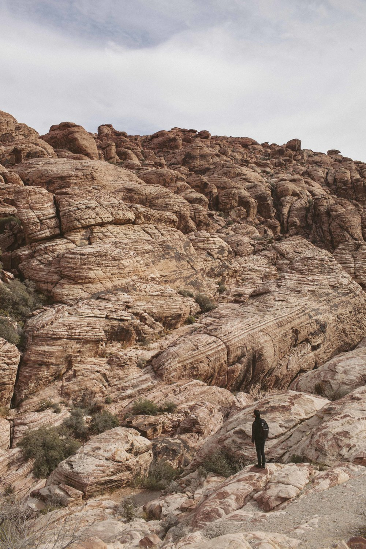Mojave Desert-1757.jpg