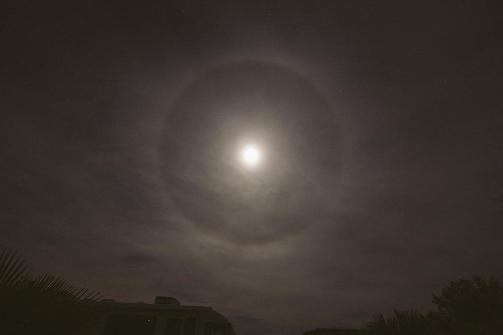Mojave Desert-1805.jpg
