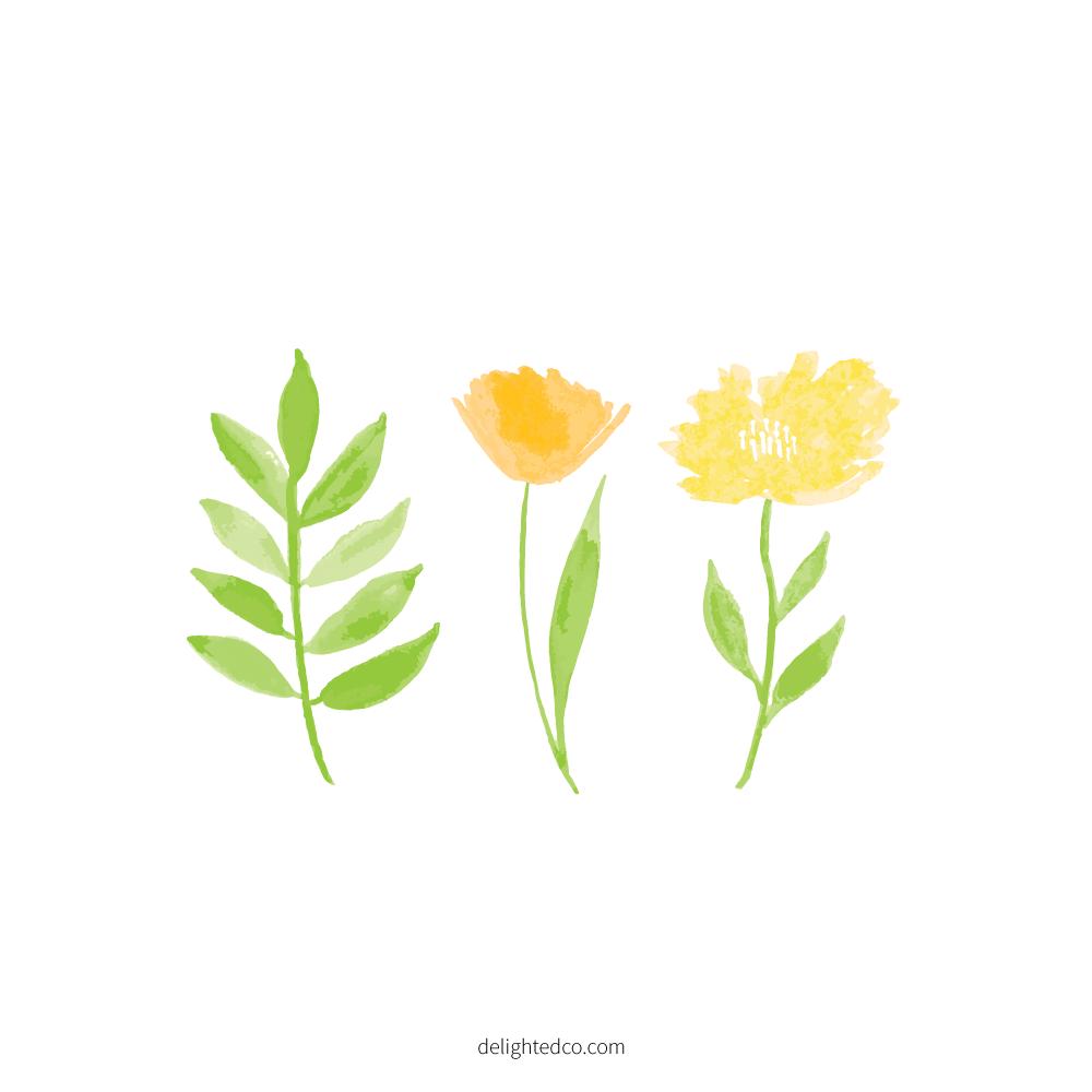 Gouache Floral Illustration by Amanda Gomes | delightedco.com
