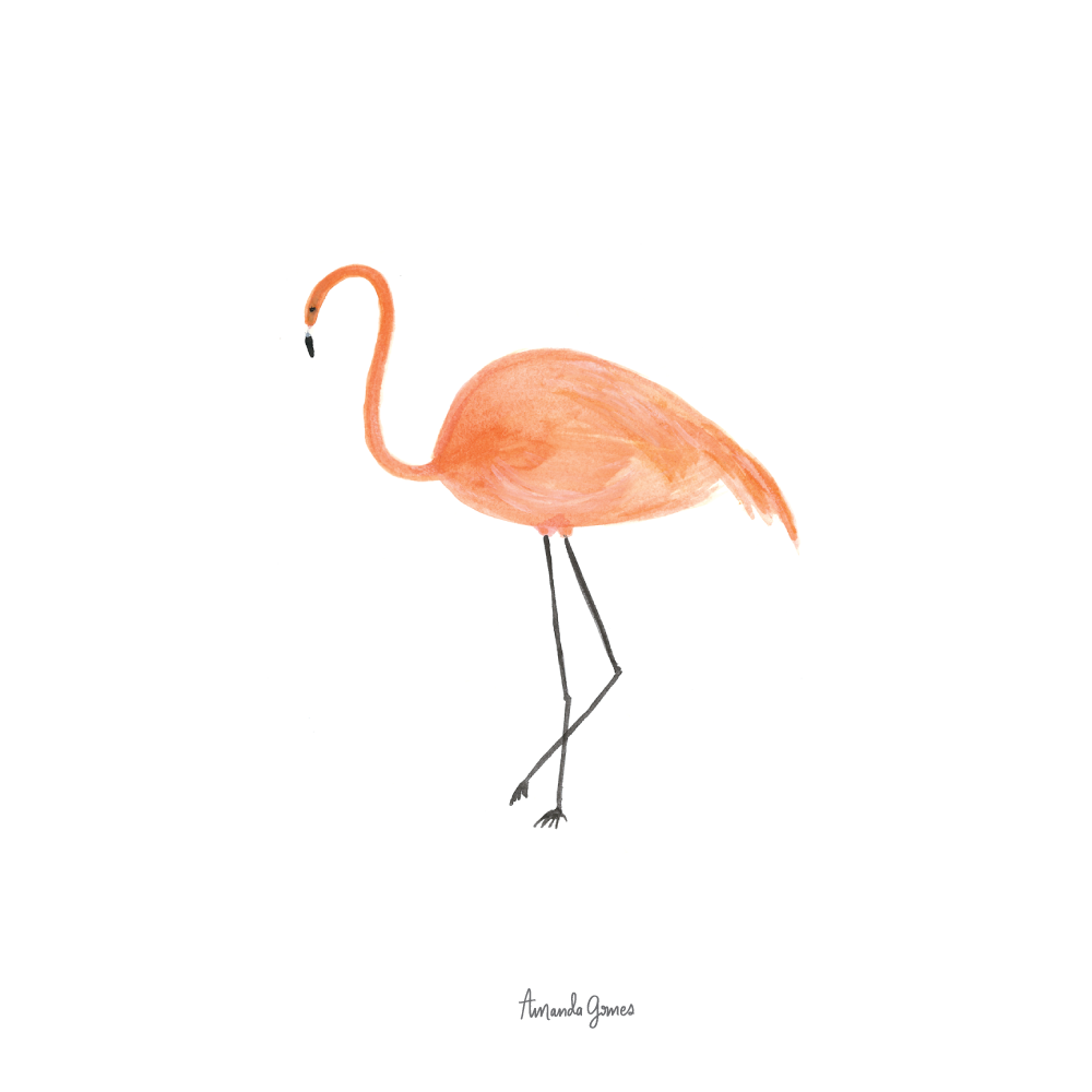 Gouache Flamingo by Amanda Gomes • Delighted Creative Co.