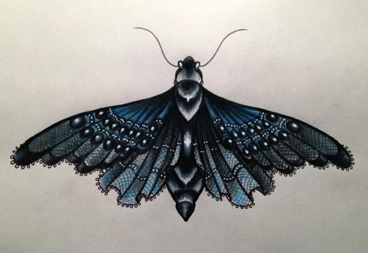 lace moth.jpg
