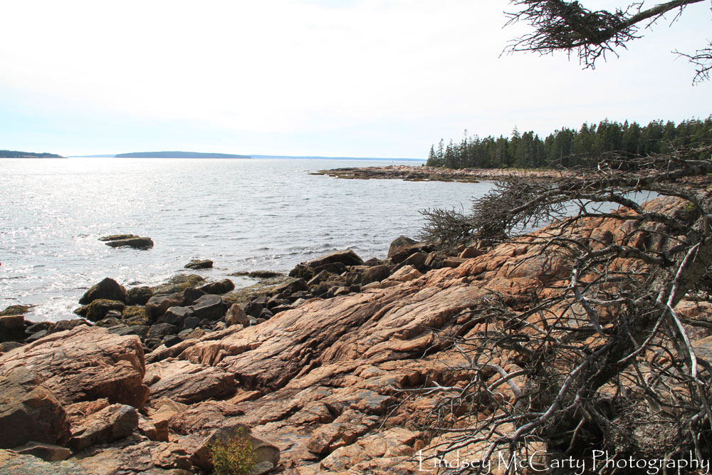 2014_Maine_psewl_1649.jpg