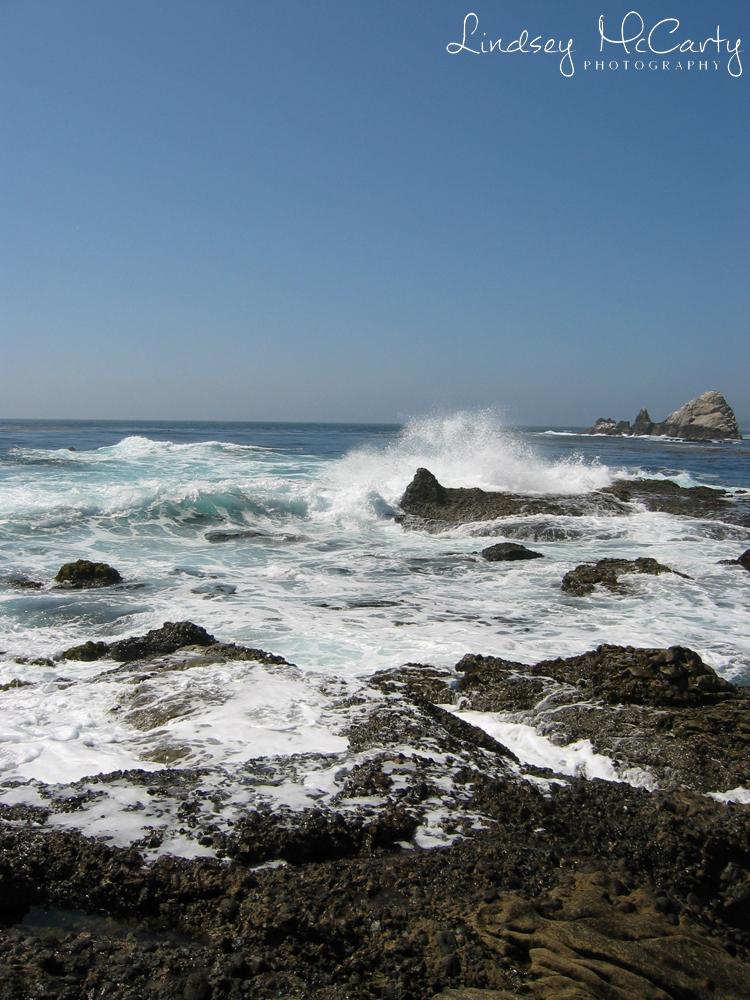 California_psewl_123_2395.jpg