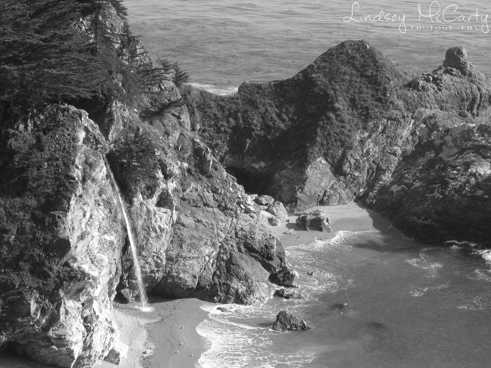 California_psewl_124_2408.jpg