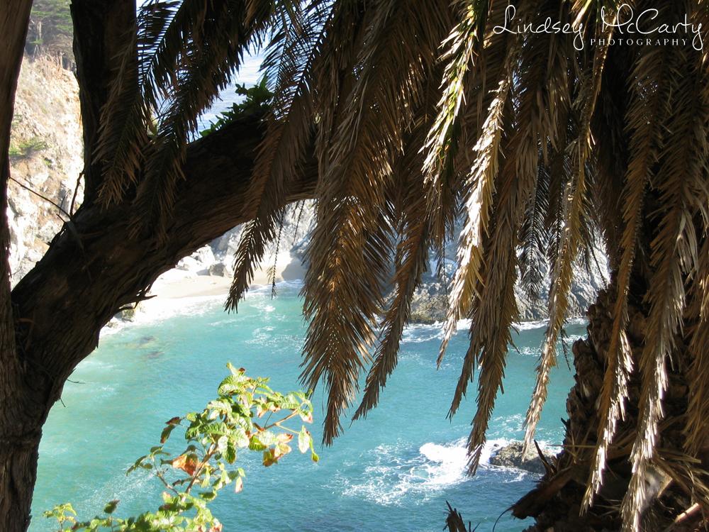California_psewl_124_2414.jpg