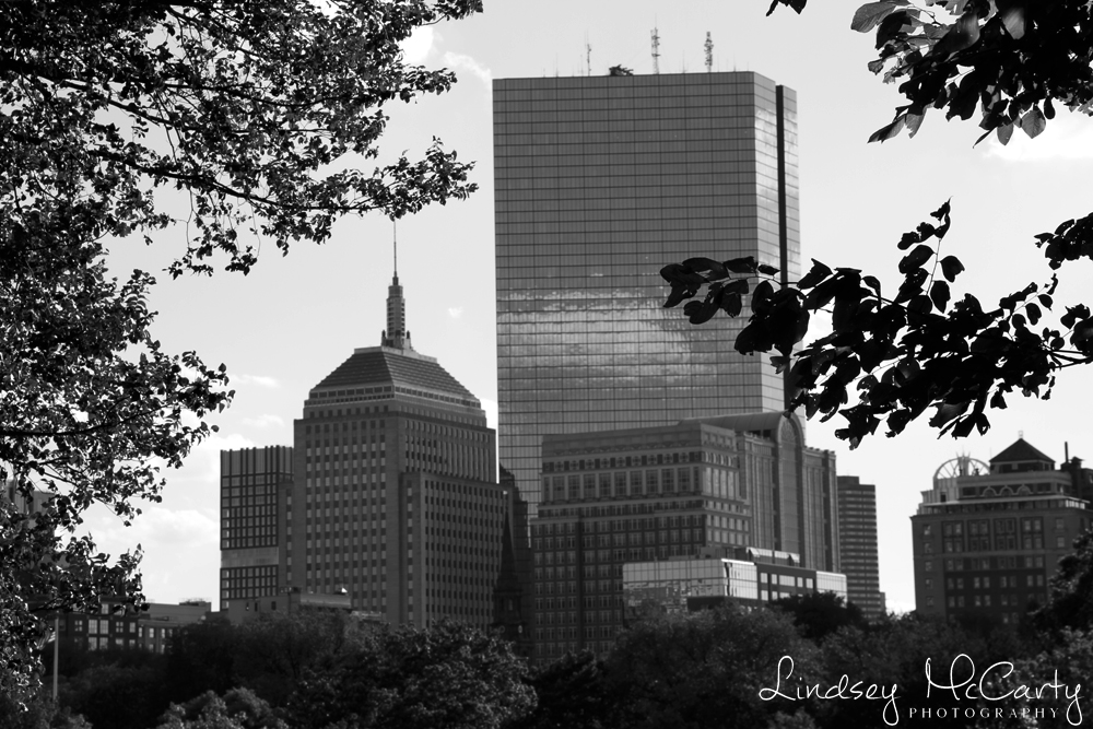 Boston_psewlJan15_1207.jpg