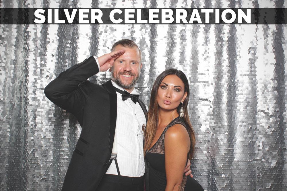 Backdrop example - silver celebration.jpg