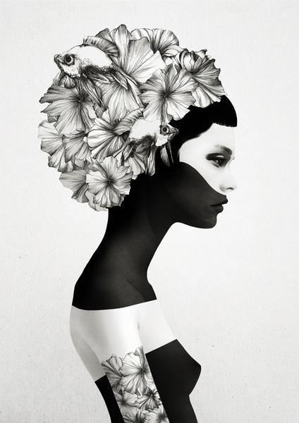 5a flower head.jpg