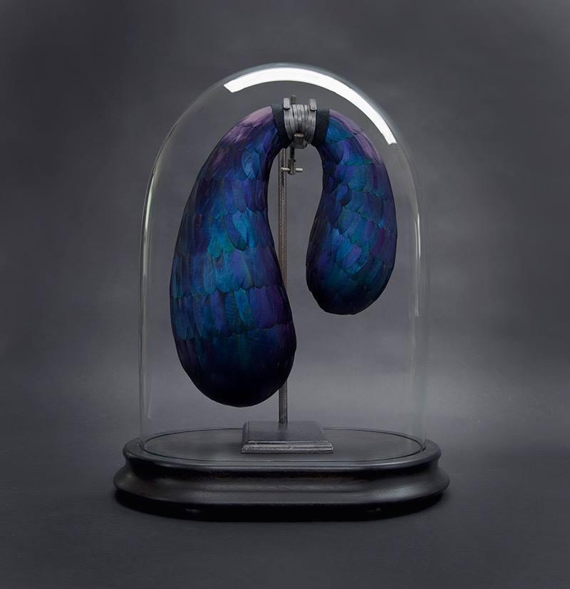 2a. blue cohones .jpg