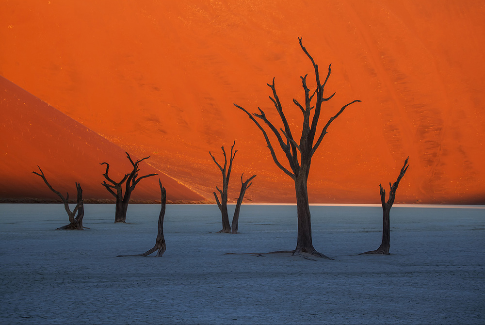 Beverly Houwing; Dead Vlei Trees at Sunrise   www.squidgallery.com