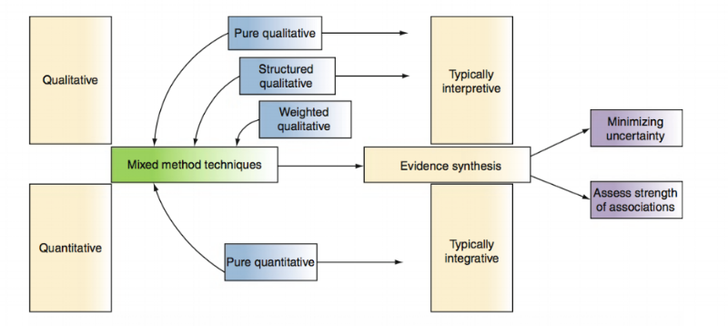 Figure 2.  Evidence synthesis method map