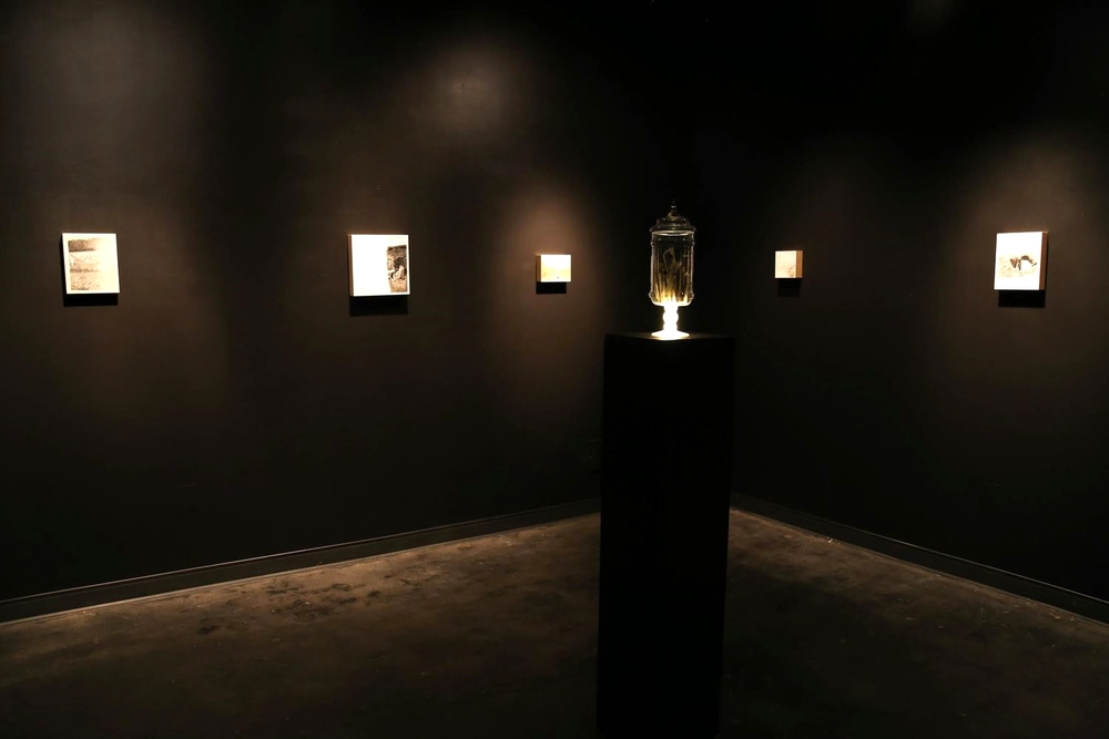 Reliquaries  (installation room view). 2014 MFA Thesis project. Exhibited in Hyde Gallery at Memphis College of Art's Nesin Graduate School  9 Paintings in oil and graphite on panel.  Center sculpture:  Reliquary for Snapshot Accidents.  65 found photographs inside modified glass jar.