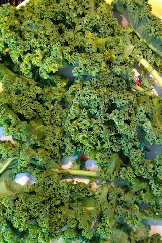 """Take 1 head of kale, wash, dry, de-stem, and tear into small 3"""" pieces. Make sure they're dry so the oil holds on them and they don't end up wilty"""