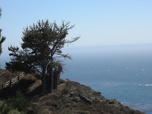 photo: See Monterey