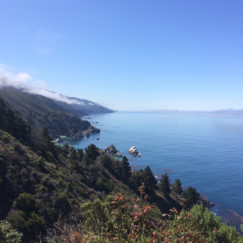 big sur guide by sugarcane