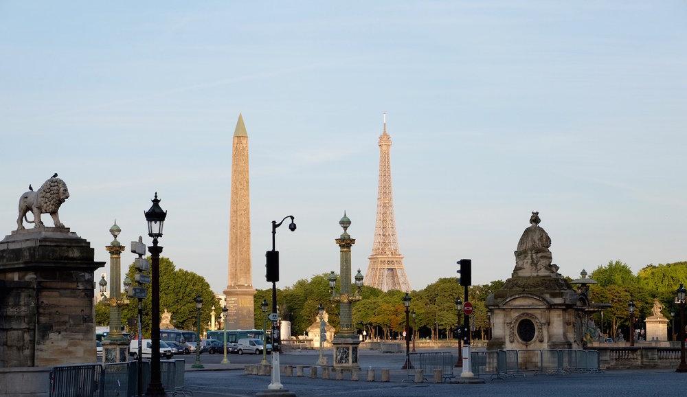 Sugarcane Life Paris