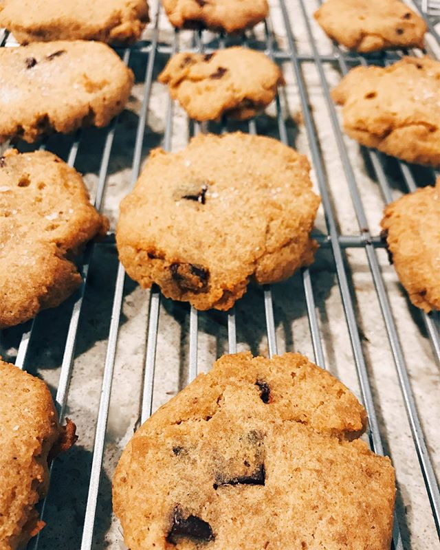 Made some easy-yummy-healthy paleo coconut chocolate chip cookies tonight! —  Now, I personally do not subscribe to or teach high-protein/low-carb diets like paleo or keto. I find them quite dangerous long-term (not to mention the catastrophic environmental impact of consuming so much animal protein). BUT, when it comes to healthy baking, I've found that searching for paleo recipes is the easiest way to find healthy, gluten-free, refined sugar-free options I can feel good about feeding to my family (and no guilt about treating myself to as well). —  This particular recipe is from @paleohacks and turned out delish. I decreased the honey and added some ground flaxseed and cinnamon to up the health quotient, and they were a big hit! Just search their site for paleo coconut flour chocolate chip cookies and you'll find the recipe. 🍪❤️ #glutenfree #refinedsugarfree #healthybaking