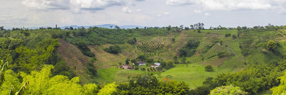 "COLOMBIAN COFFEE REGION  | Image size: 36""x12""  |  300 dpi"