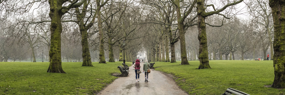 "WALK AT THE GREEN PARK   |   Image size: 36""x12""   