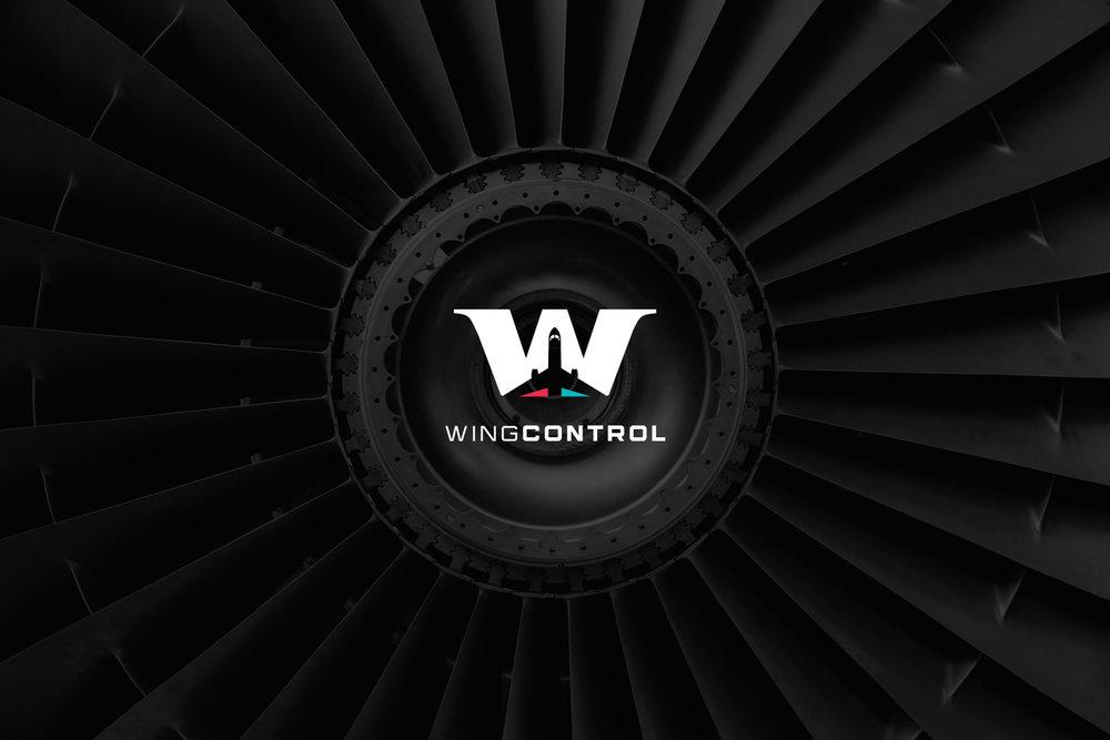 WING-CONTROL1.jpg