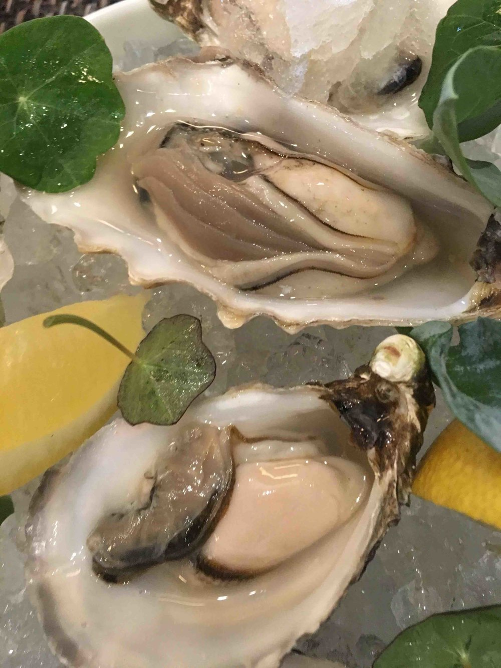 Martin Wishart's oysters
