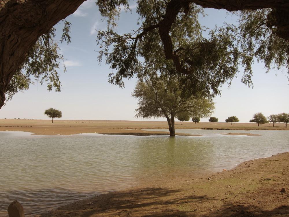 Water reservoir at Bhap village, Rajasthan.
