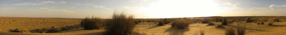 The desert.JPG