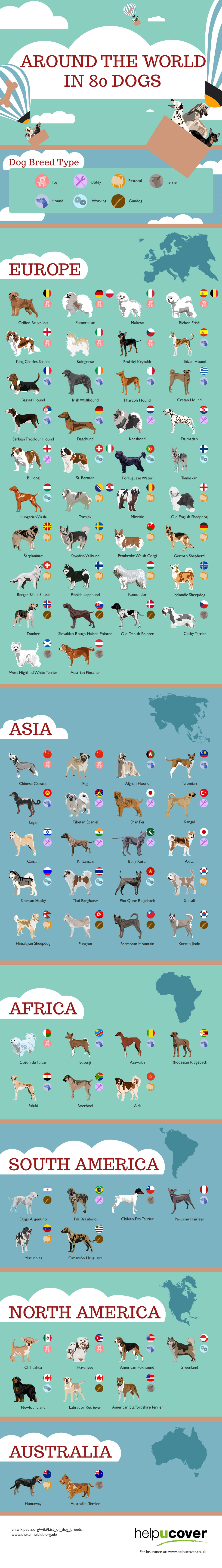 primal canine dog training around the world in 80 dogs