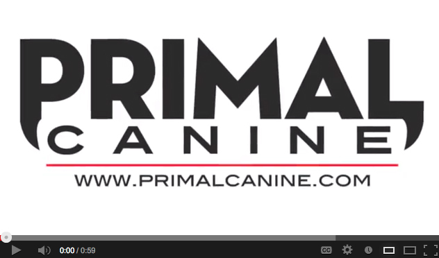 primal canine dog training youtube