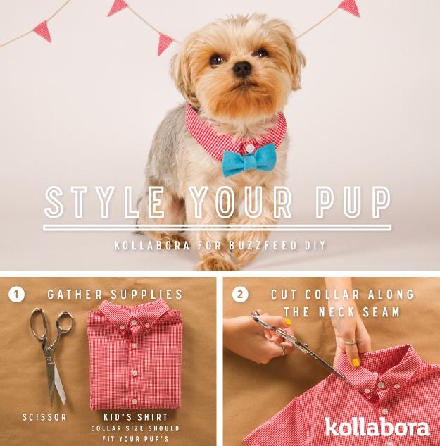 diy dog bow tye primal canine san jose dog training
