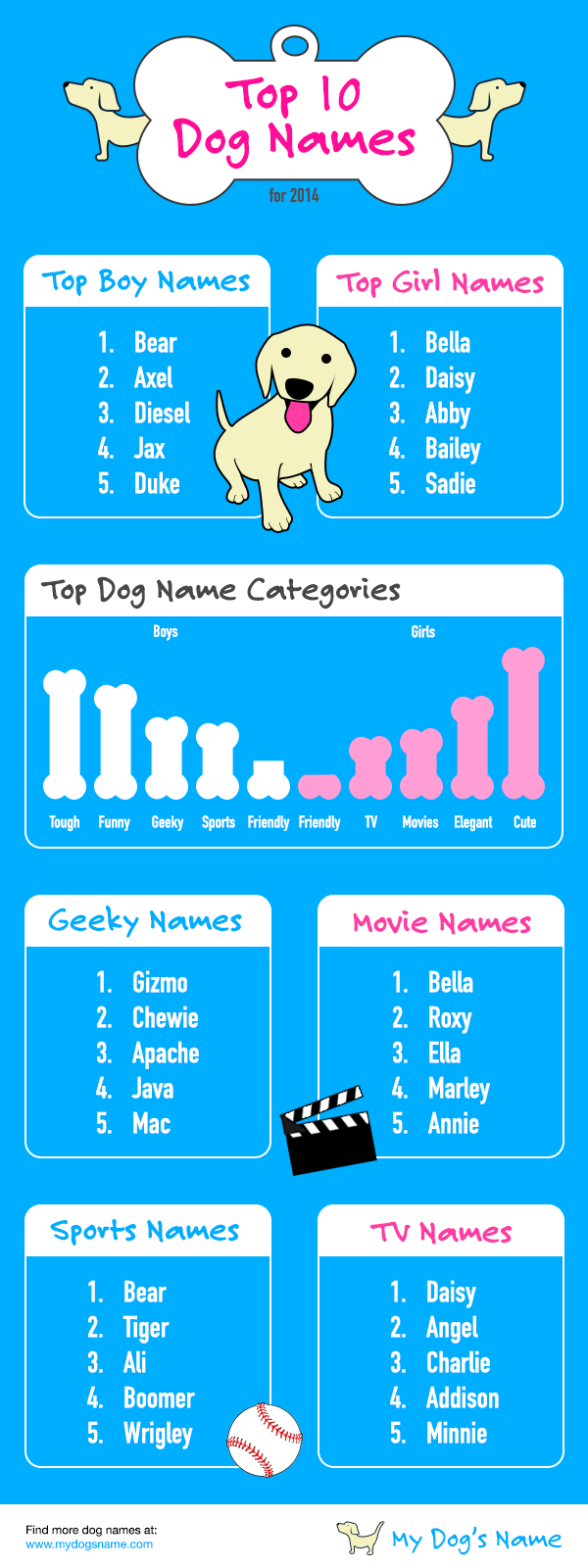 Good Disney Names For Dogs