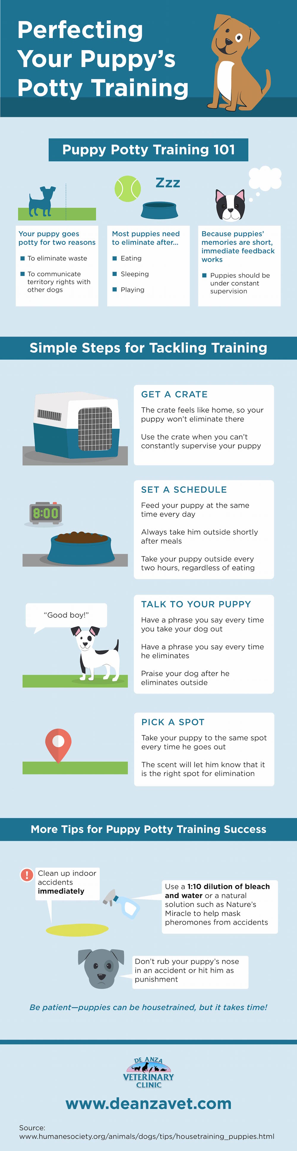 perfecting-your-puppys-potty-training_55d74ccc0b579.jpg