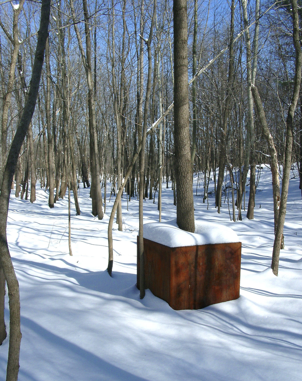 sculpture_tree_cube_snow_flood_fall_siu_carbondale_il_2003-04-27_[18 tree cube snow]_12859.jpg
