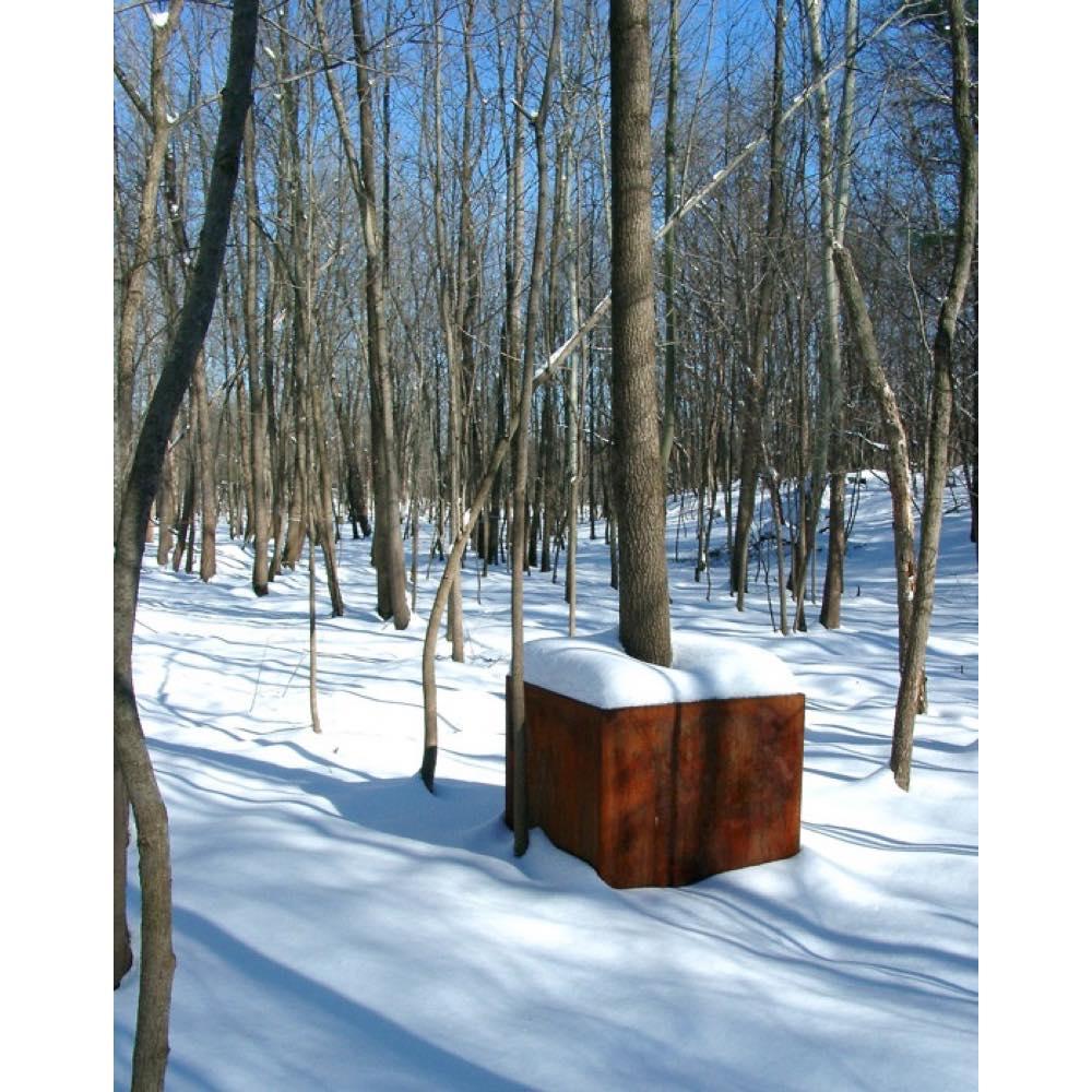 Tree Cube (Winter)