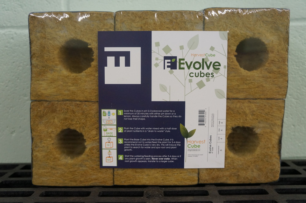 Rockwool Evolve Cubes