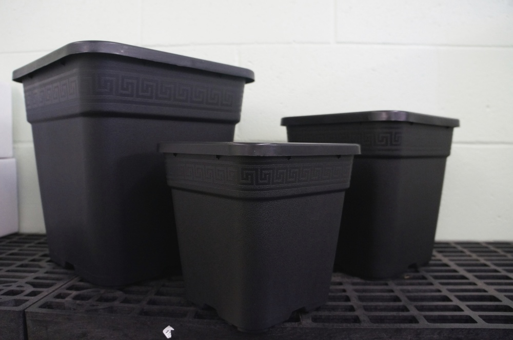 "Square Pots:  7"", 9"", and 12"""