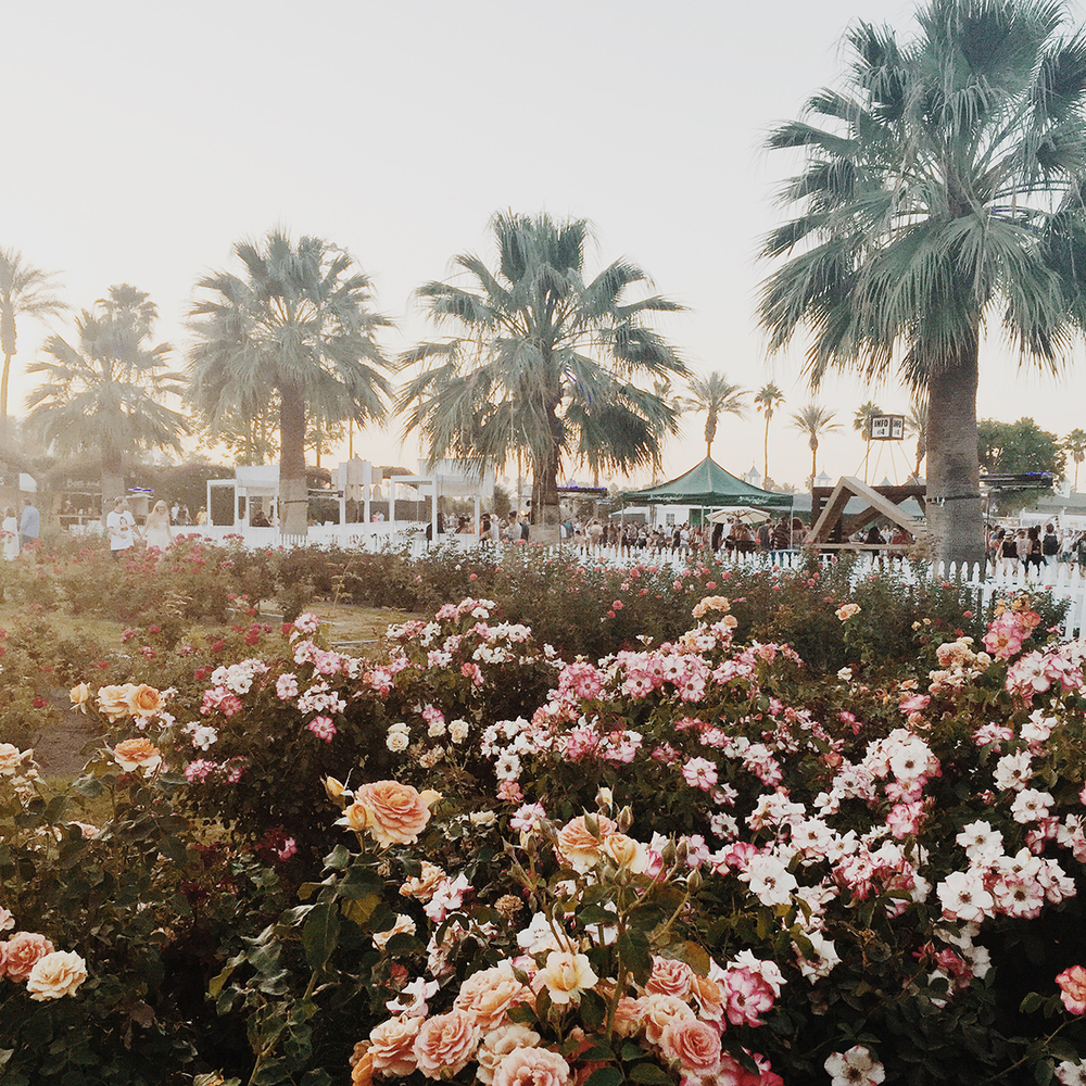VIP Rose Garden in Coachella