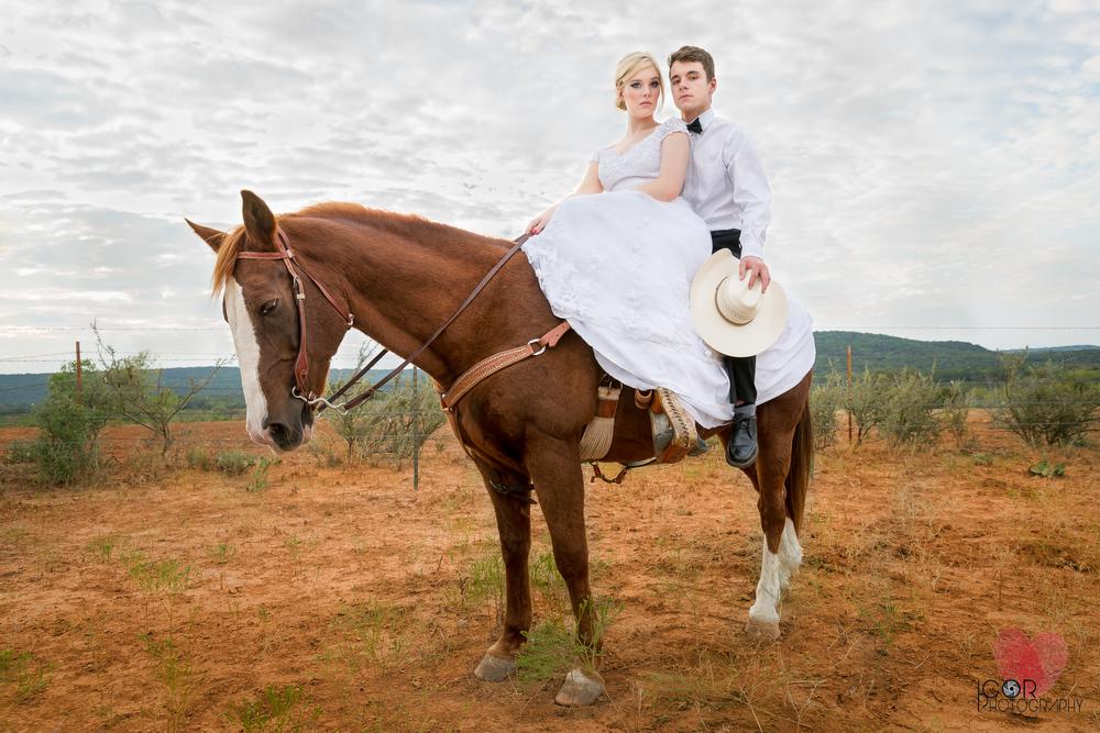 Kate-Colby-Horse-3.jpg