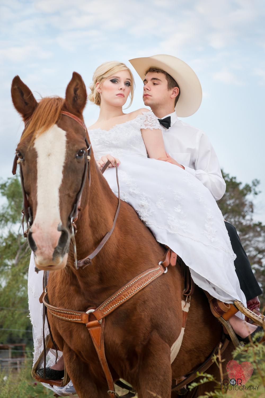 Kate-Colby-Horse-7.jpg
