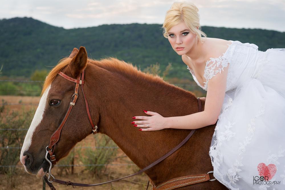 Kate-Colby-Horse-10.jpg