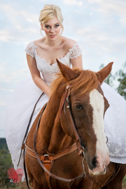 Kate-Colby-Horse-16.jpg