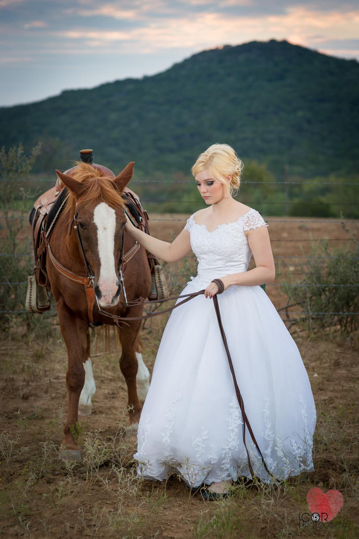 Kate-Colby-Horse-18.jpg