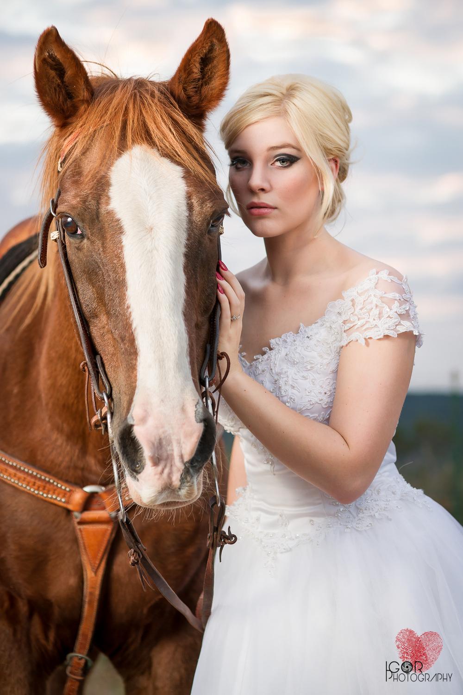 Kate-Colby-Horse-20.jpg